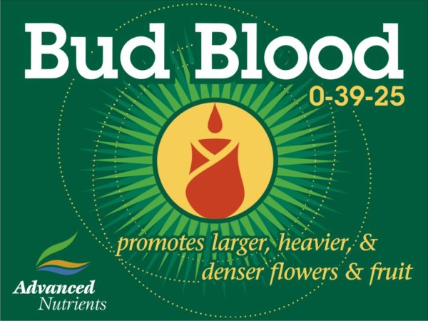 Bud Blood 500g