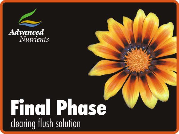 Final Phase 4L