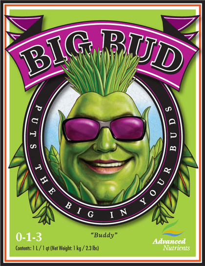 Big Bud Powder 2.5Kg