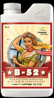 B-52 (10 L)