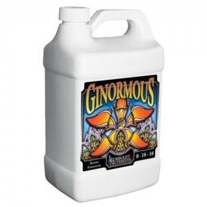 GINORMOUS QUART
