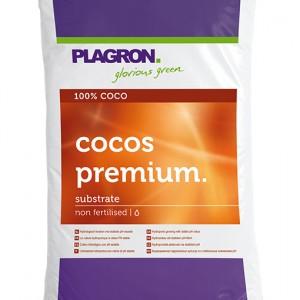 COCOS PREMIUM WEB